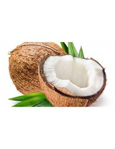 coco seco ecológico
